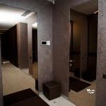 скрытые двери, заполнение зеркало тонированное