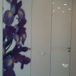 скрытые двери, заполнение стекло с фотопечатью